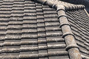 外壁・屋根のカビや苔